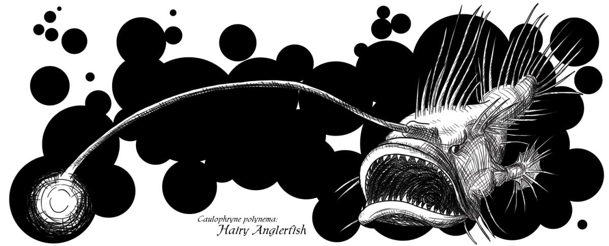 HairyAnglerFishMug